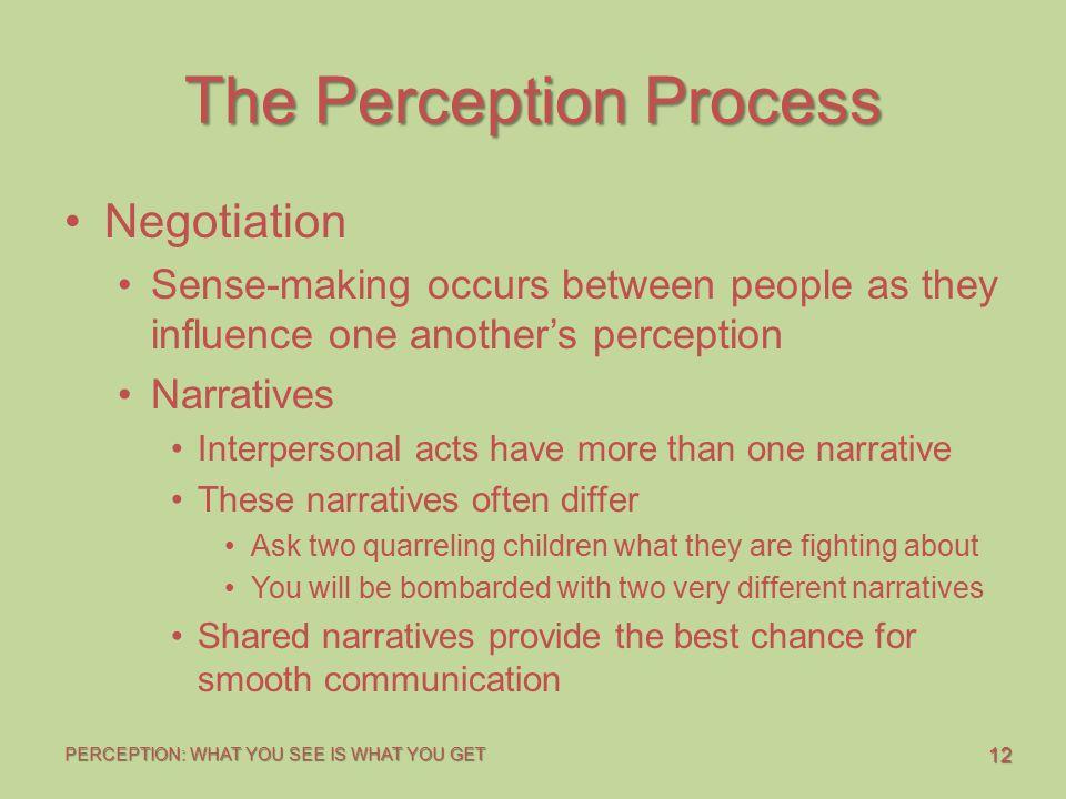 The Perception Process