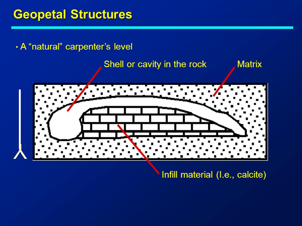 Y Geopetal Structures A natural carpenter's level