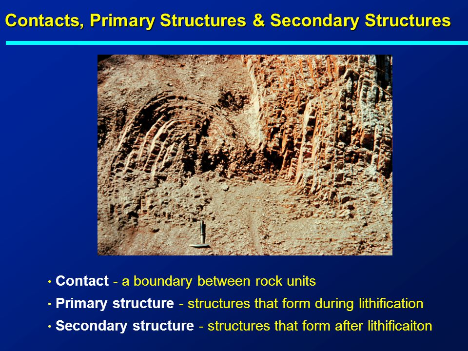 Contacts, Primary Structures & Secondary Structures