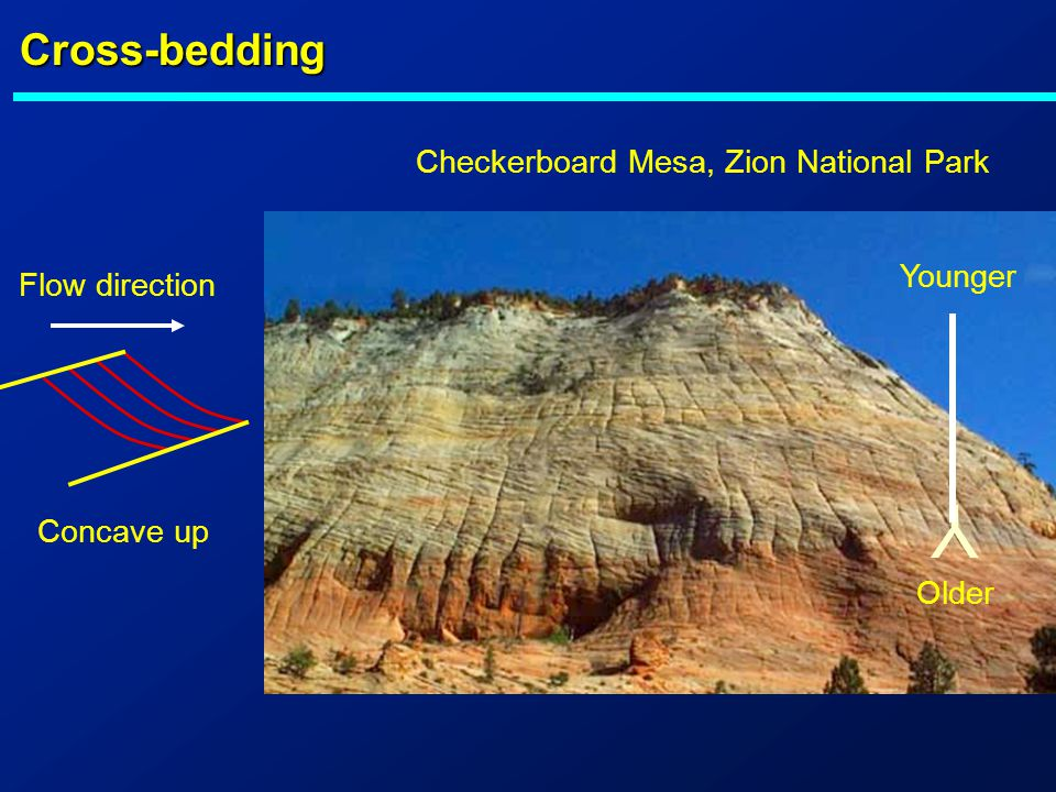 Y Cross-bedding Checkerboard Mesa, Zion National Park Younger
