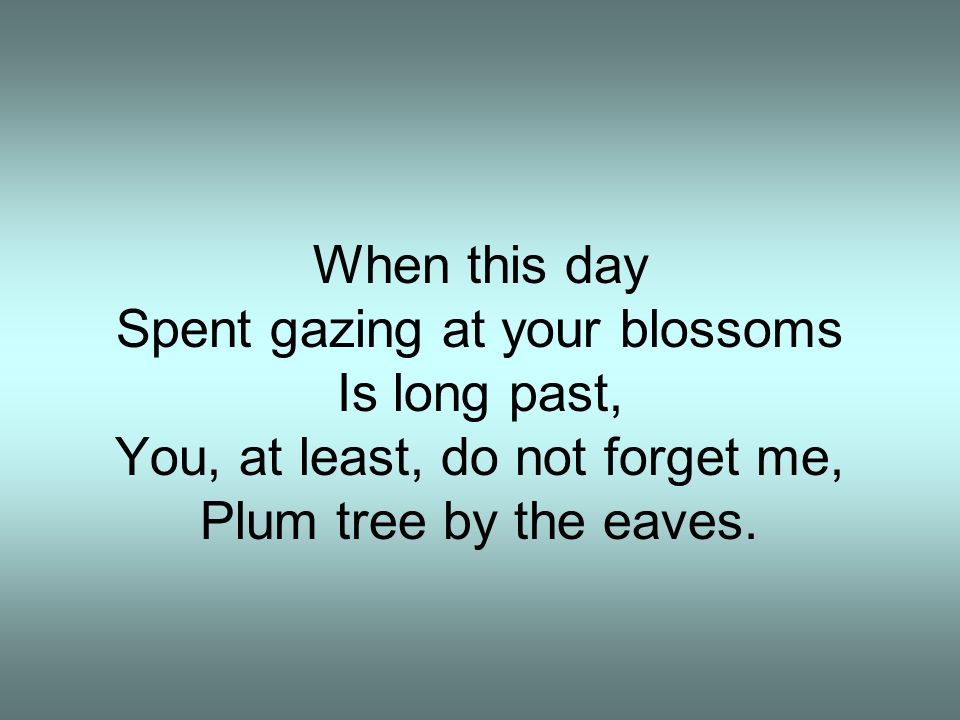 Spent gazing at your blossoms Is long past,