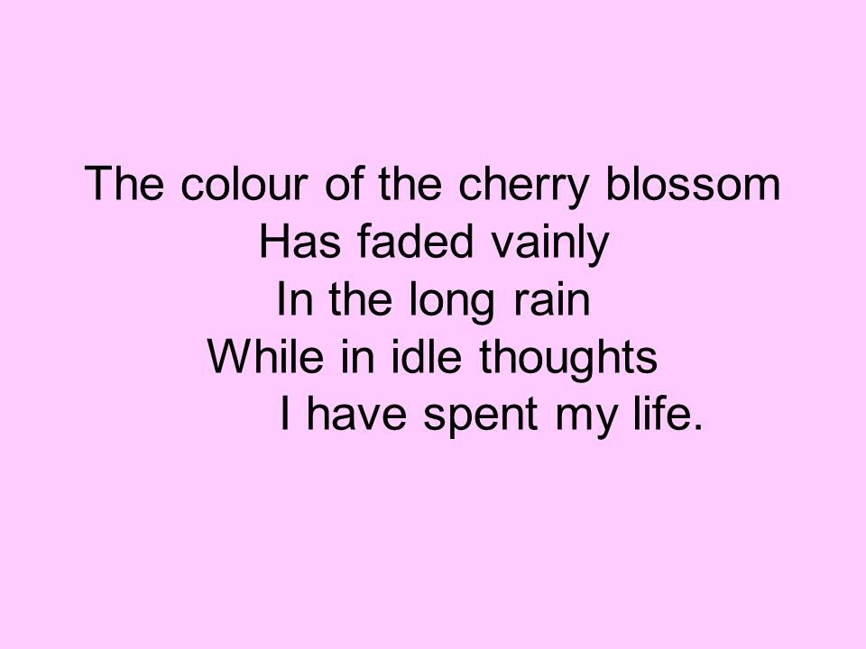 The colour of the cherry blossom