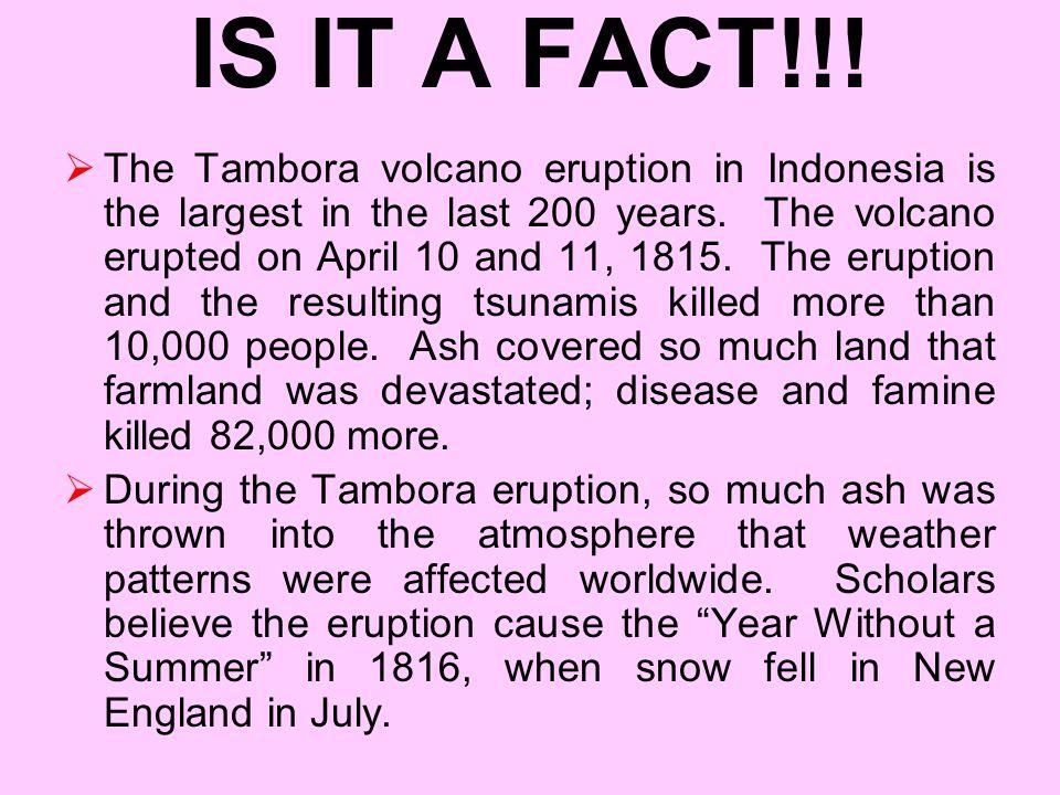 IS IT A FACT!!!