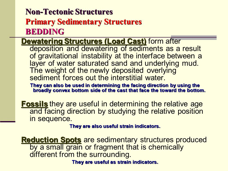 Non-Tectonic Structures Primary Sedimentary Structures BEDDING