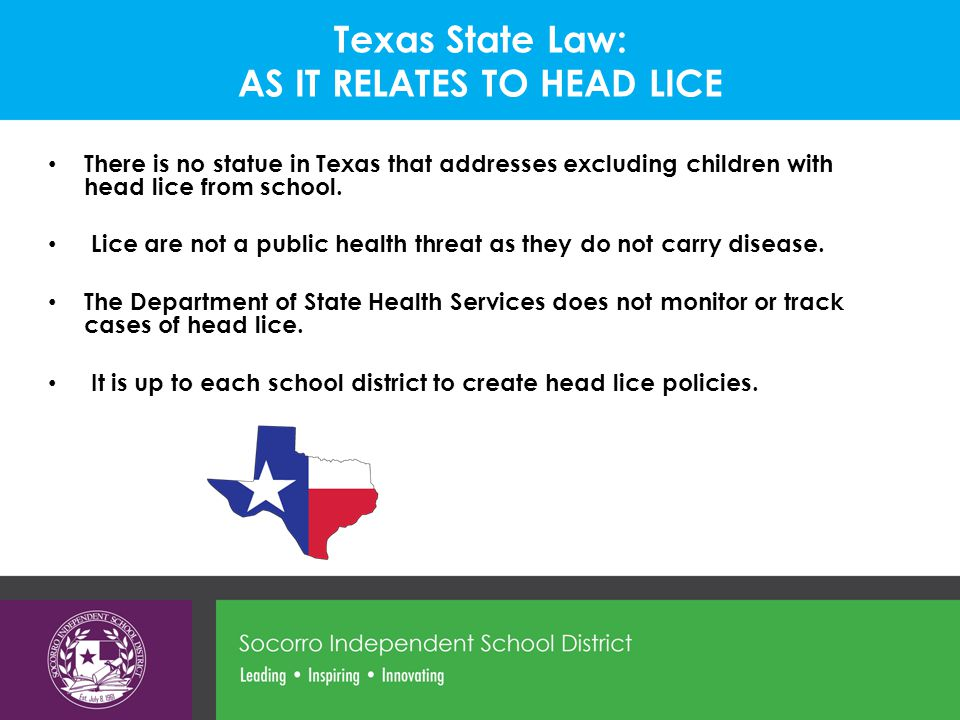 Texas State Law: AS IT RELATES TO HEAD LICE