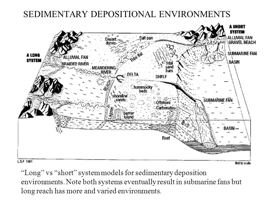 SEDIMENTARY DEPOSITIONAL ENVIRONMENTS