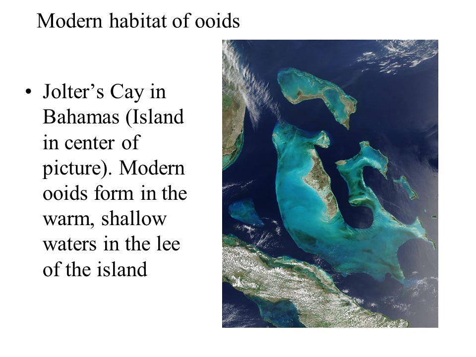 Modern habitat of ooids