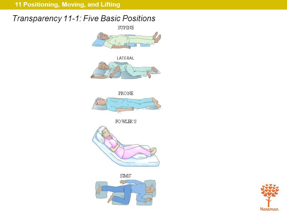 Transparency 11-1: Five Basic Positions