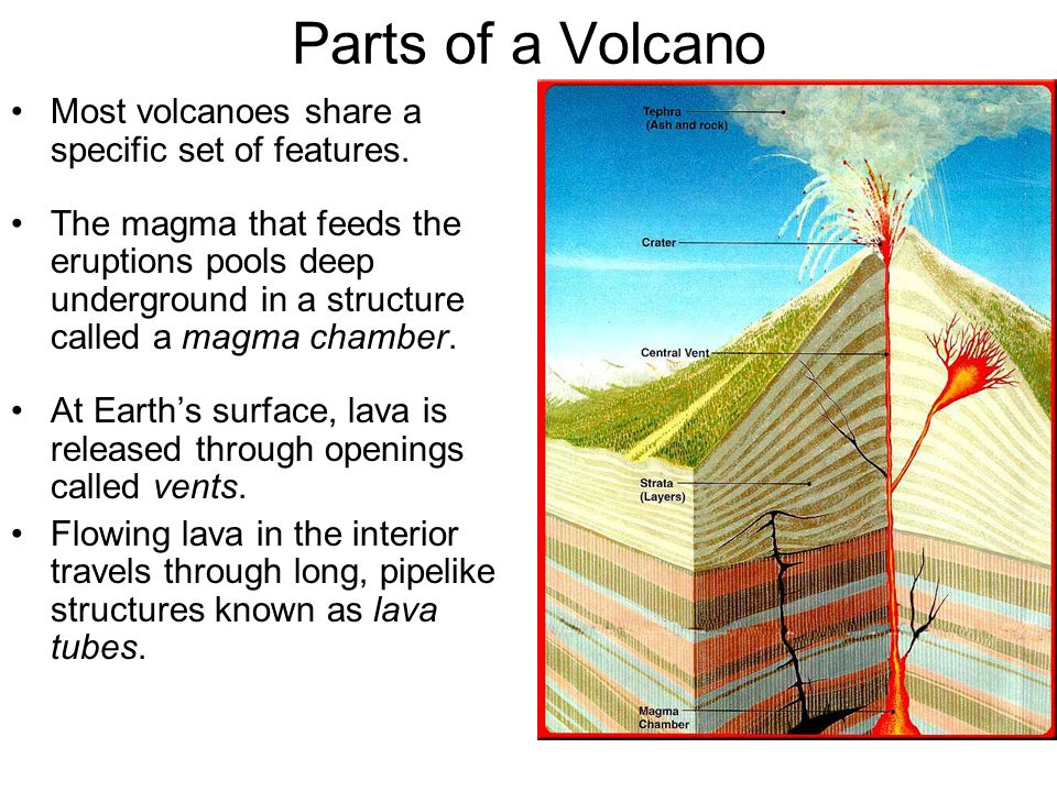 Parts of a Volcano Most volcanoes share a specific set of features.