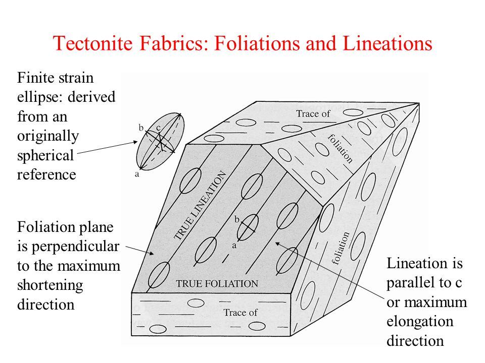 Tectonite Fabrics: Foliations and Lineations