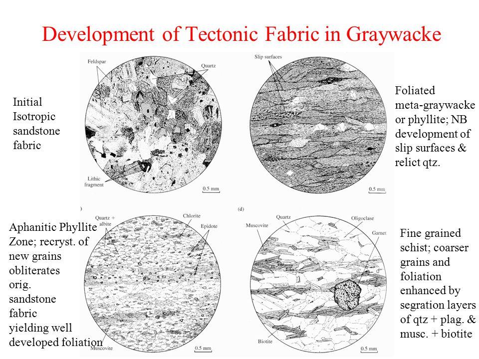 Development of Tectonic Fabric in Graywacke