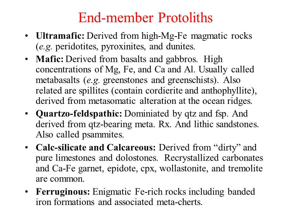 End-member Protoliths