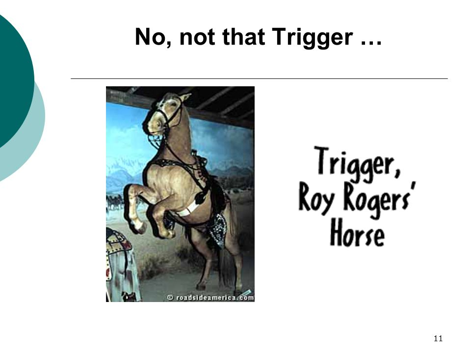 No, not that Trigger … Okay, but not that Trigger; wrong Trigger.