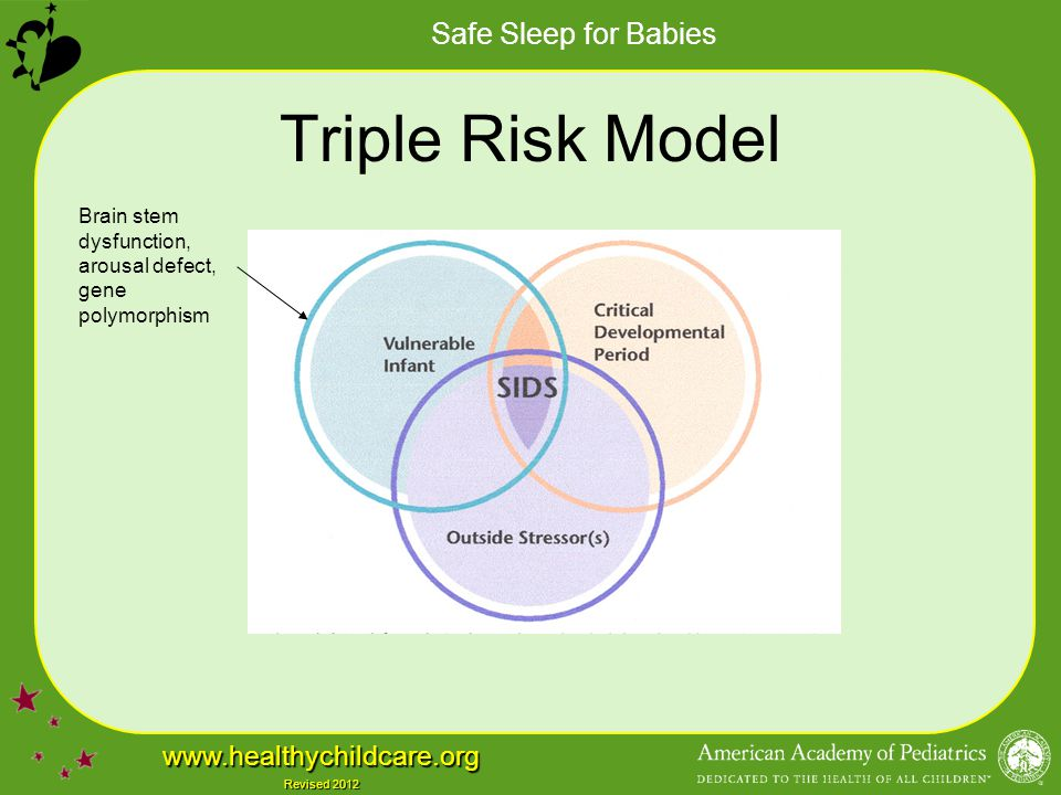 Triple Risk Model Brain stem dysfunction, arousal defect, gene polymorphism.