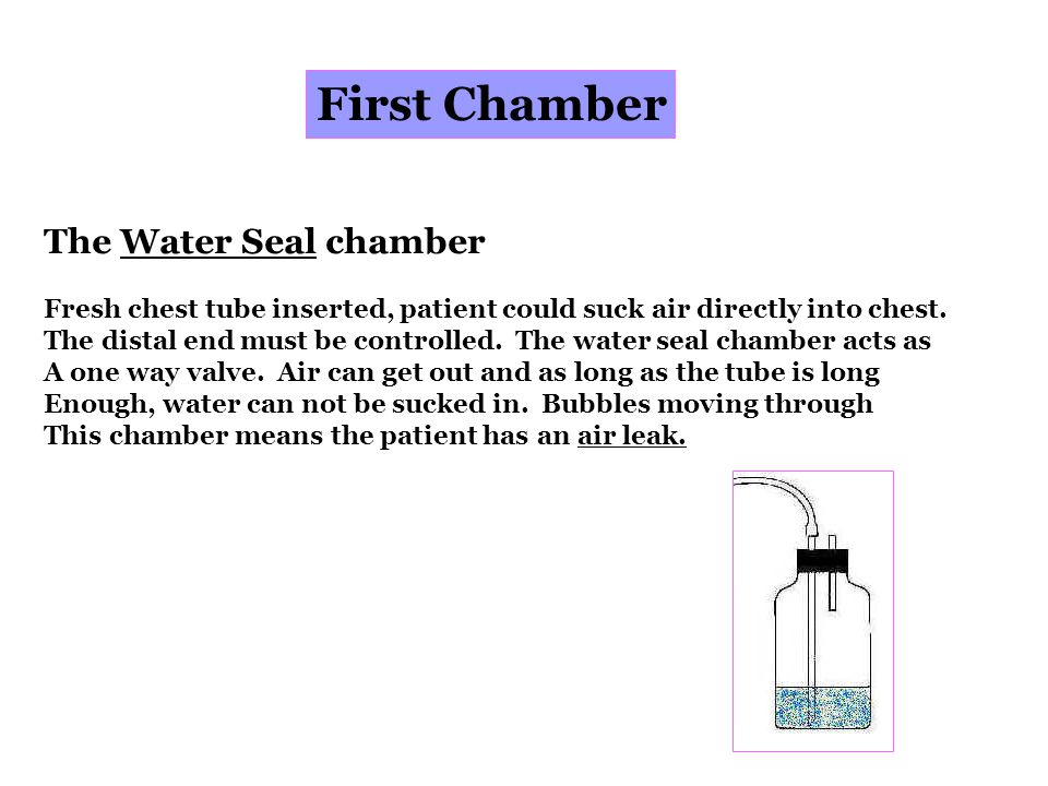 First Chamber The Water Seal chamber