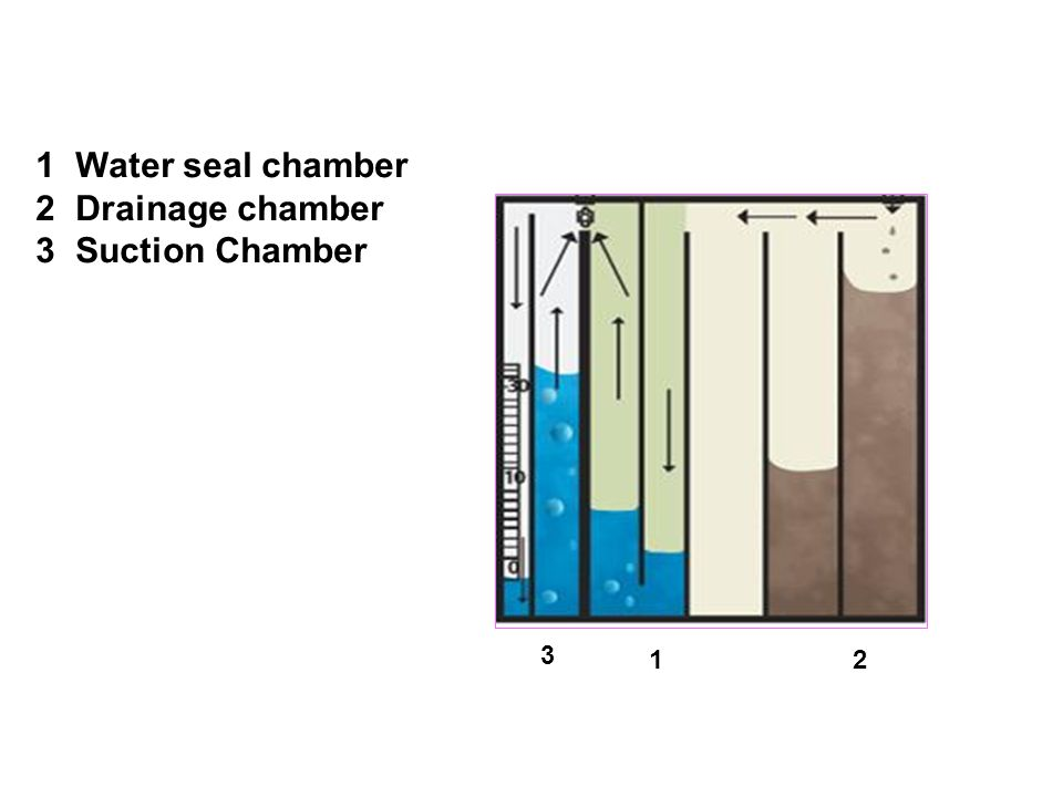 Water seal chamber Drainage chamber Suction Chamber 3 1 2