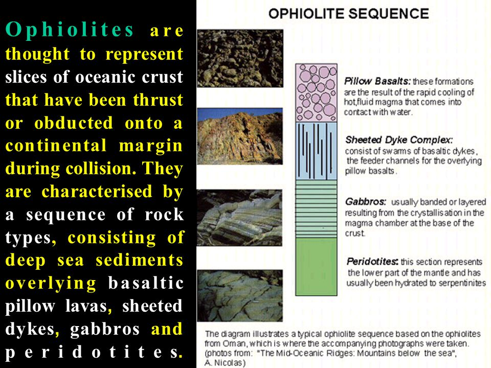 Ophiolites are thought to represent slices of oceanic crust that have been thrust or obducted onto a continental margin during collision.