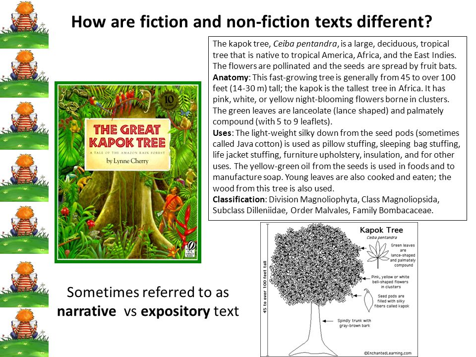 How are fiction and non-fiction texts different