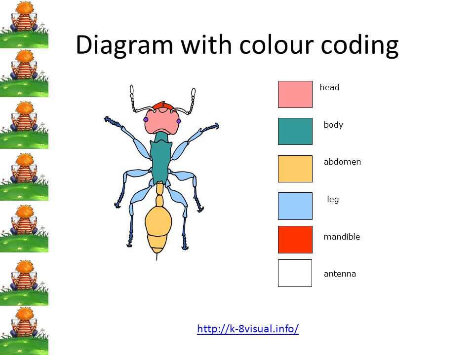 Diagram with colour coding