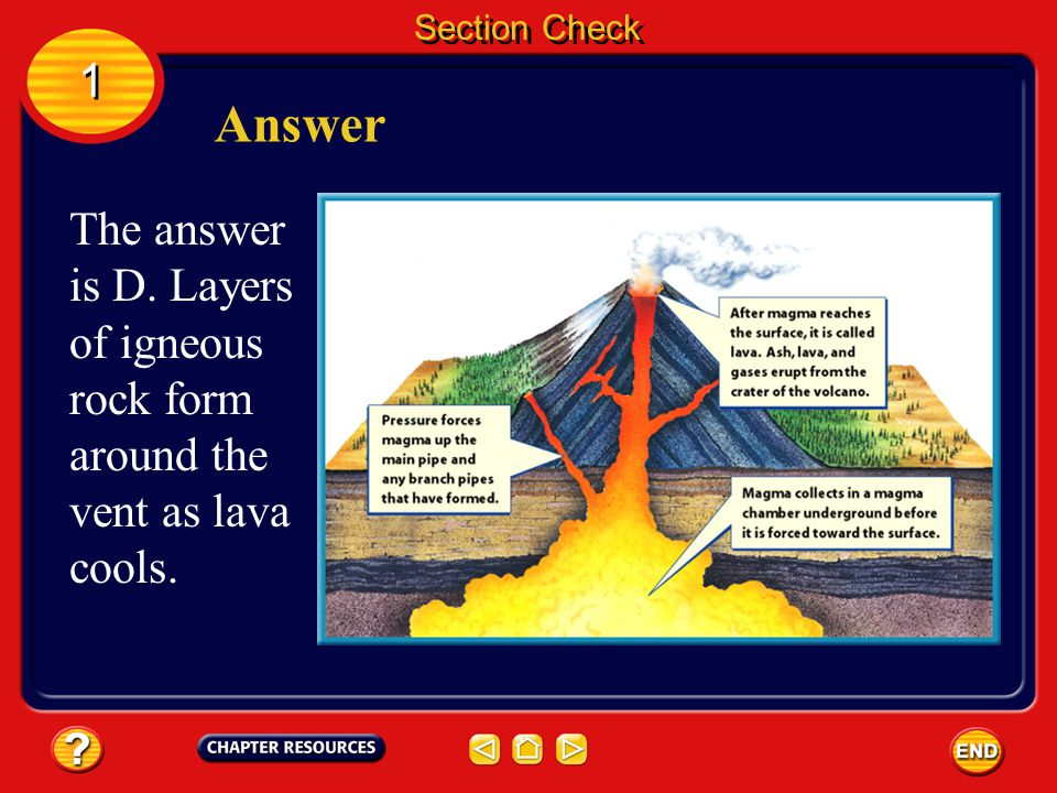 Section Check 1 Answer The answer is D. Layers of igneous rock form around the vent as lava cools.