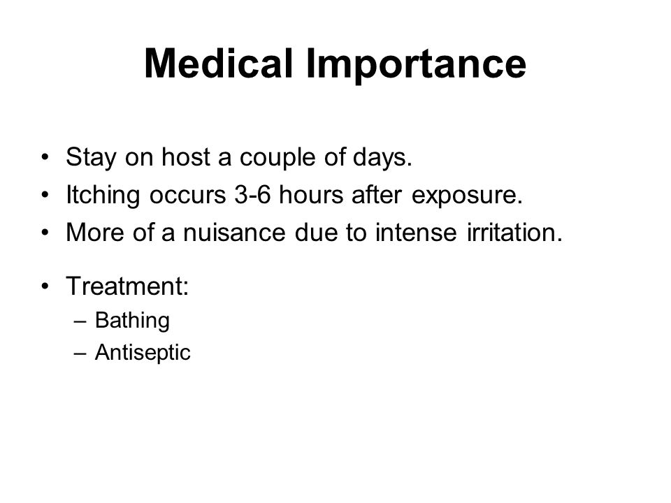 Medical Importance Stay on host a couple of days.