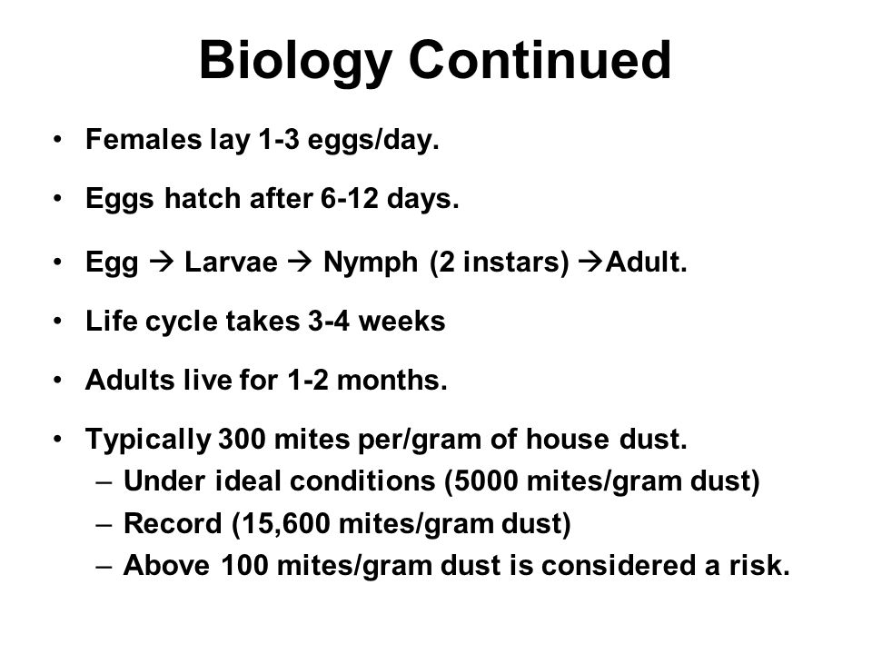 Biology Continued Females lay 1-3 eggs/day.