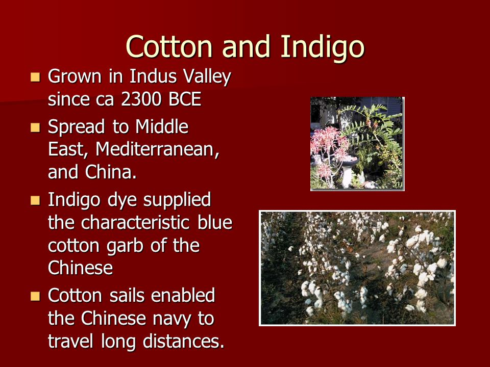 Cotton and Indigo Grown in Indus Valley since ca 2300 BCE