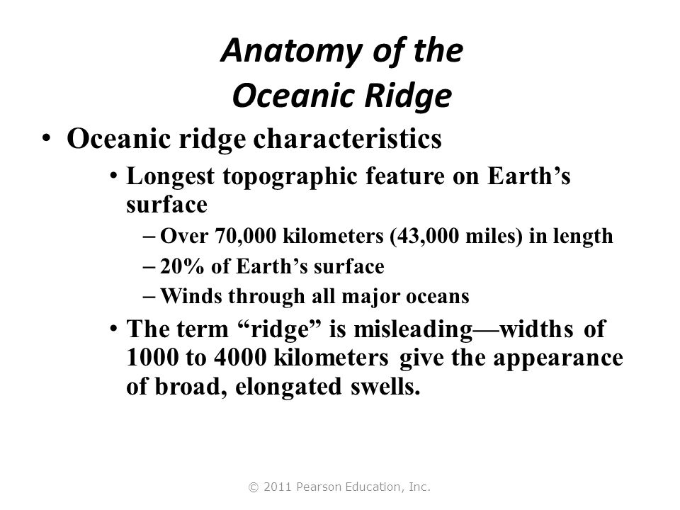 Anatomy of the Oceanic Ridge