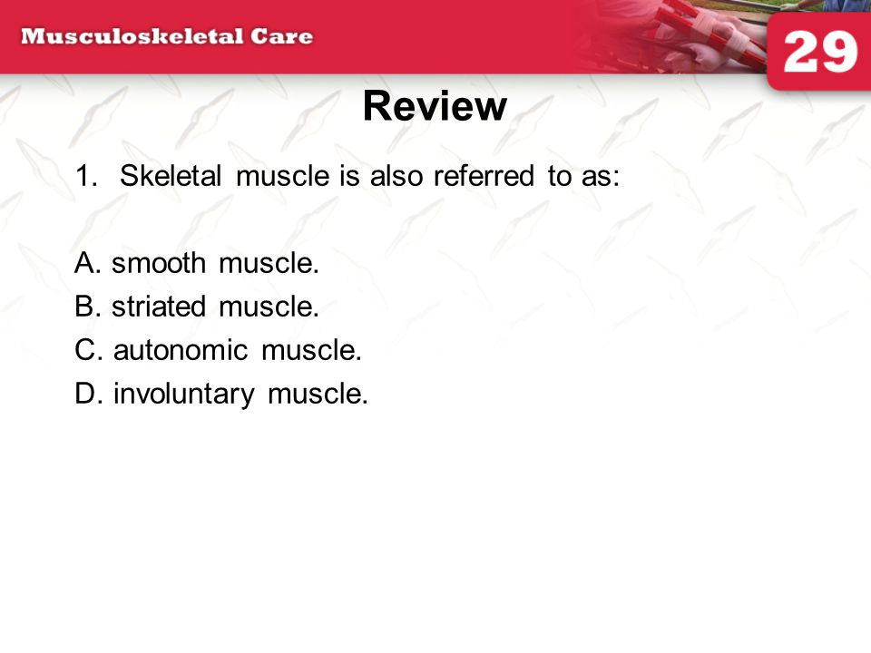 Review Skeletal muscle is also referred to as: A. smooth muscle.