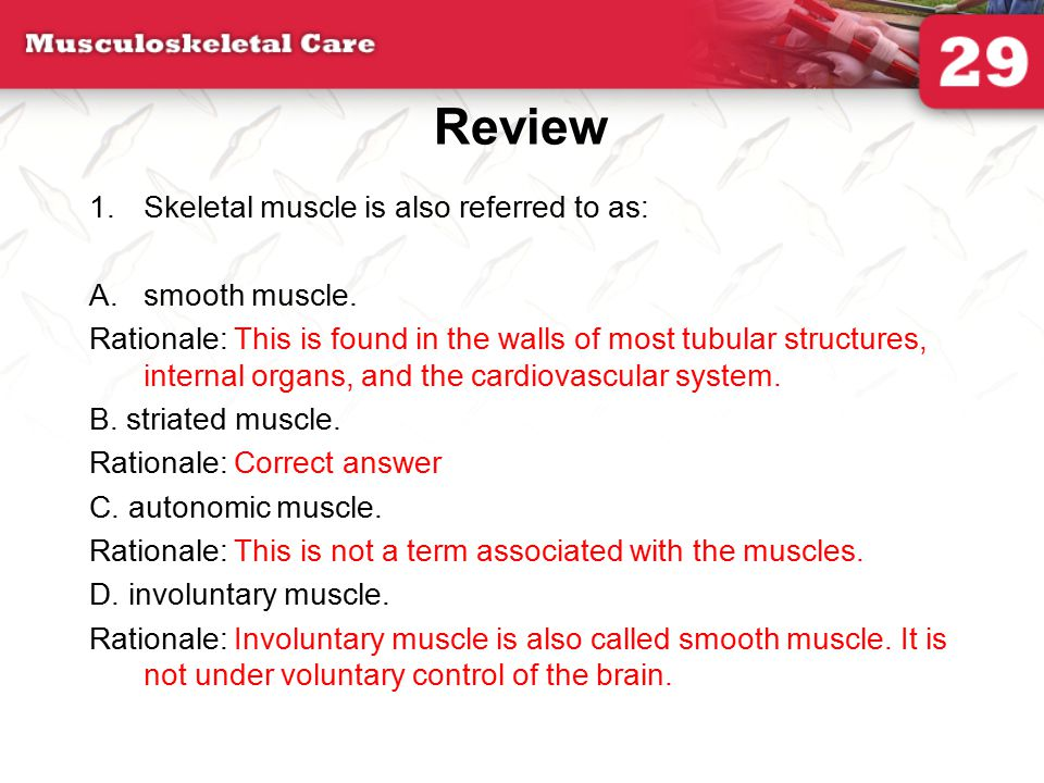 Review Skeletal muscle is also referred to as: smooth muscle.