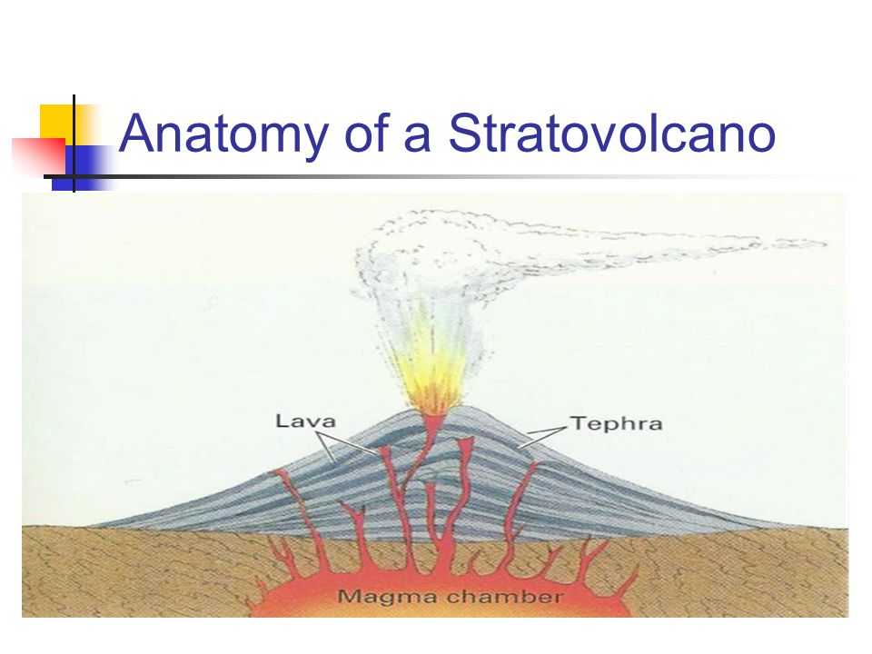 Anatomy of a Stratovolcano