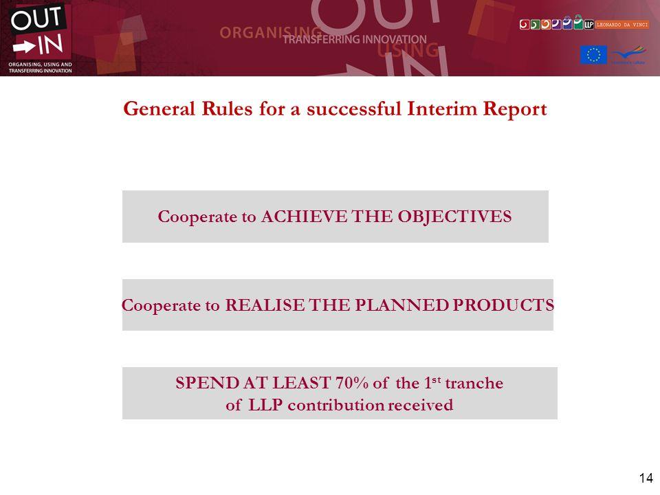 General Rules for a successful Interim Report