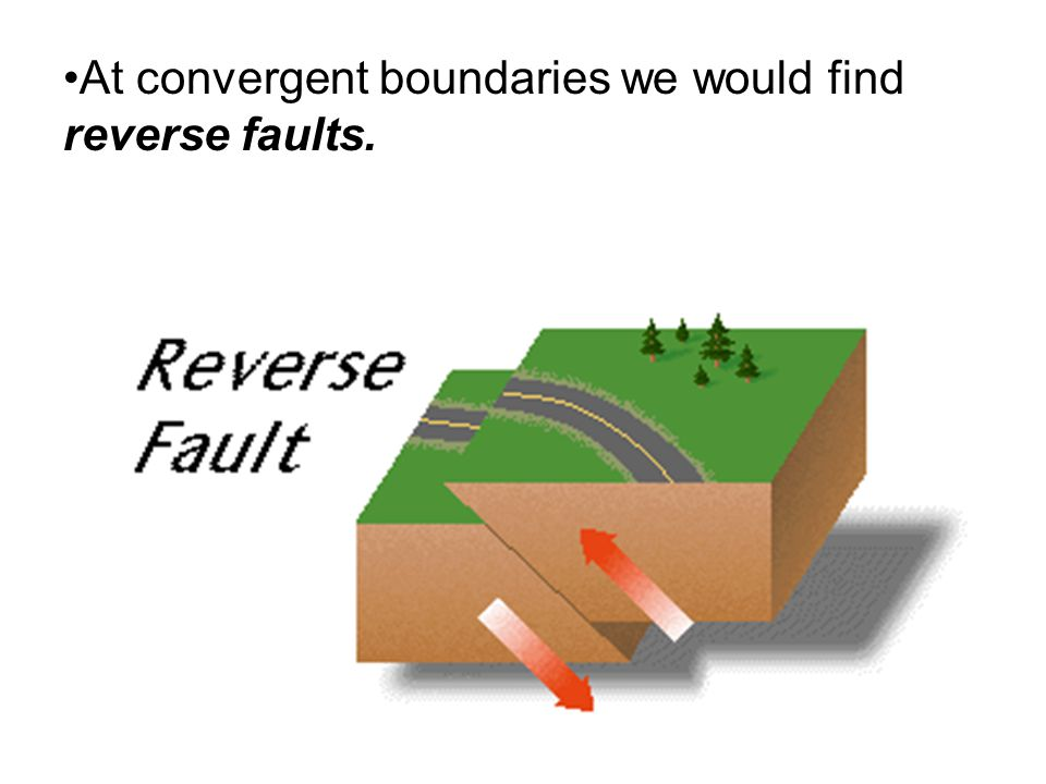 At convergent boundaries we would find reverse faults.