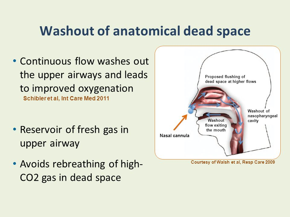 Washout of anatomical dead space