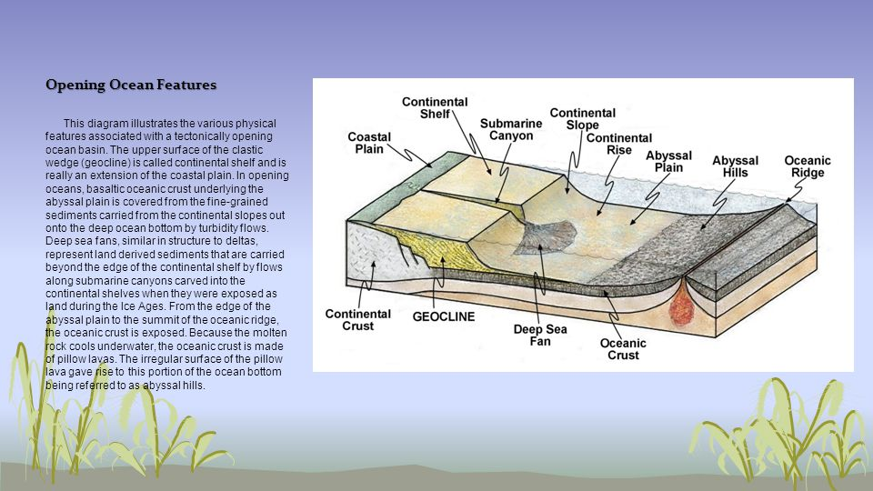 Opening Ocean Features
