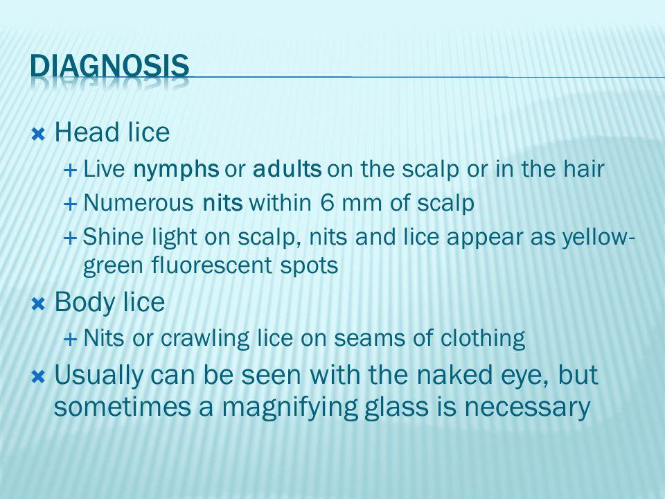 Diagnosis Head lice Body lice