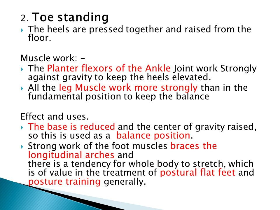 2. Toe standing The heels are pressed together and raised from the floor. Muscle work: -