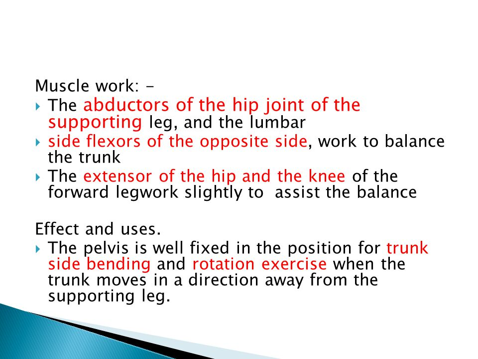 Muscle work: - The abductors of the hip joint of the supporting leg, and the lumbar. side flexors of the opposite side, work to balance the trunk.