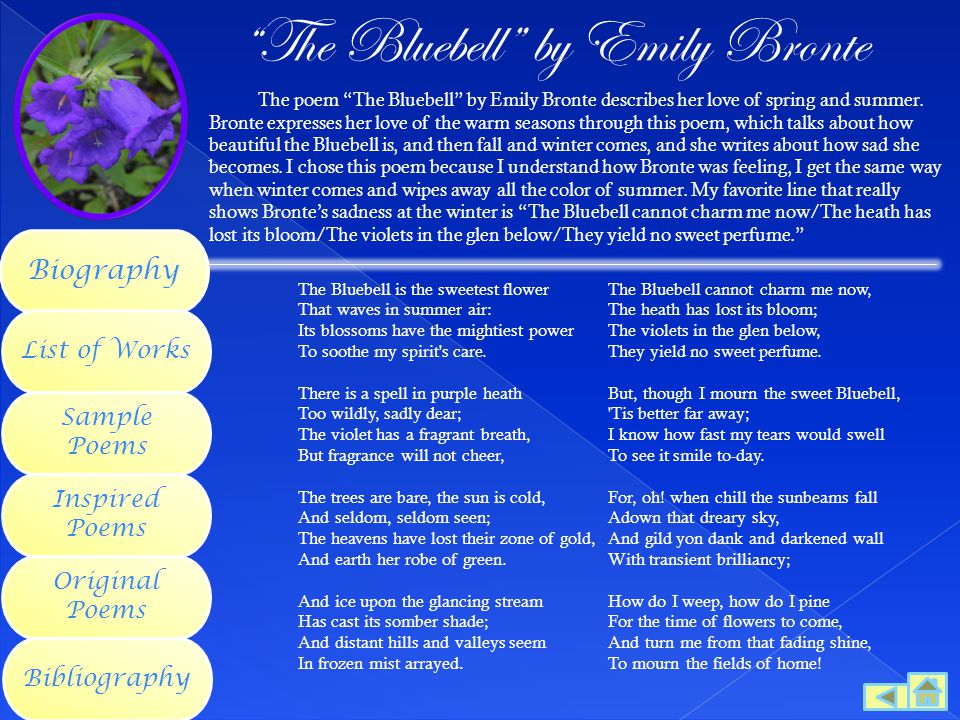 The Bluebell by Emily Bronte