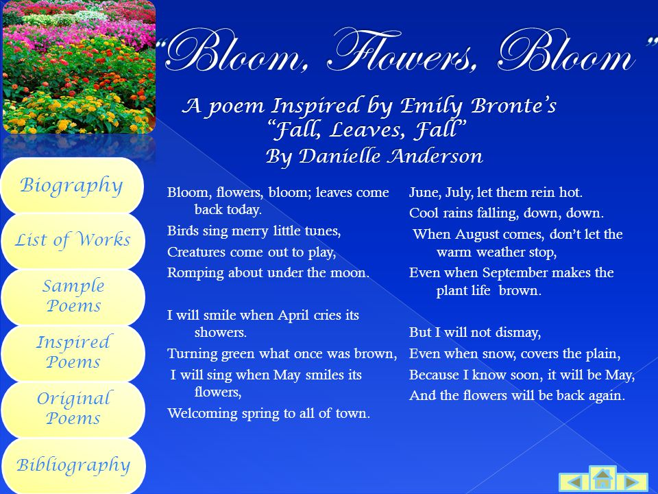 Bloom, Flowers, Bloom By Danielle Anderson