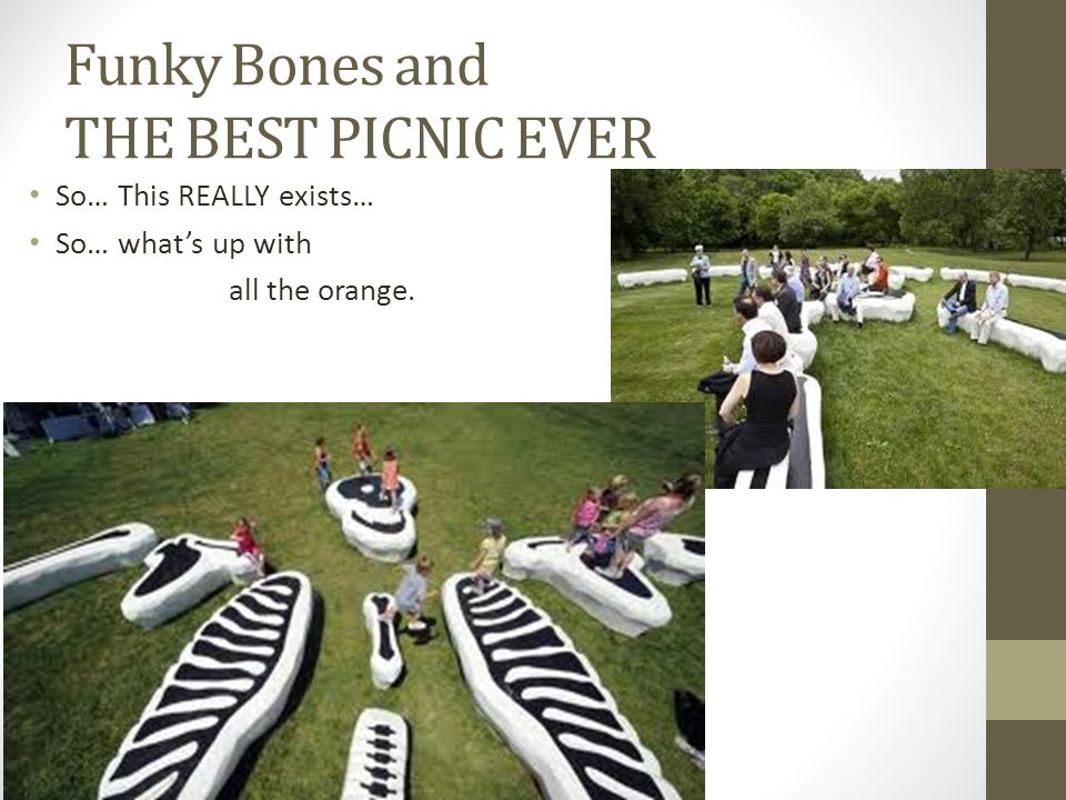 Funky Bones and THE BEST PICNIC EVER
