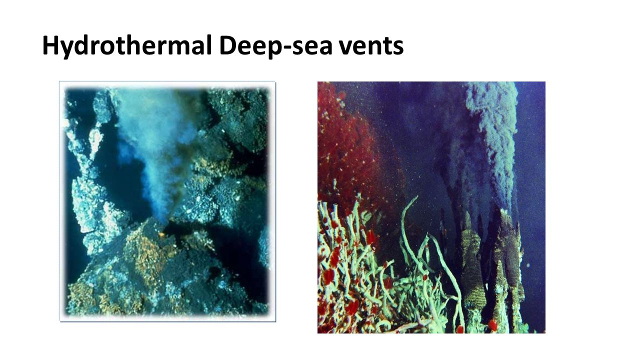 Hydrothermal Deep-sea vents