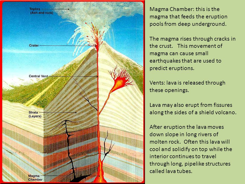 Magma Chamber: this is the magma that feeds the eruption pools from deep underground.