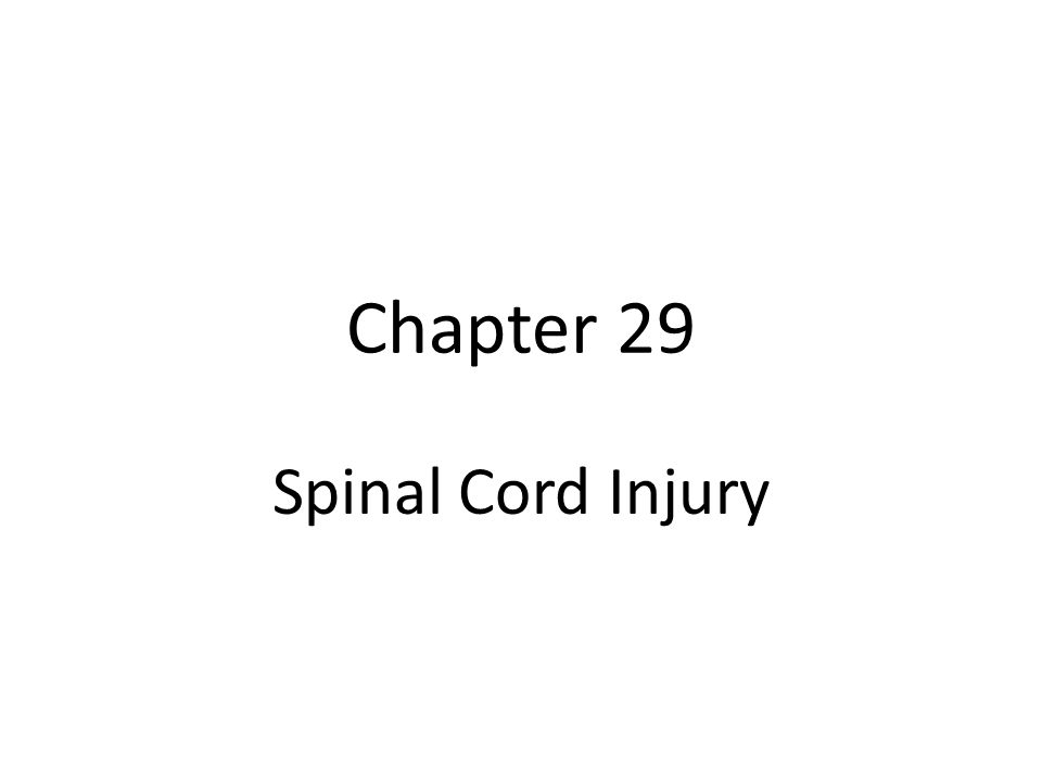 Chapter 29 Spinal Cord Injury