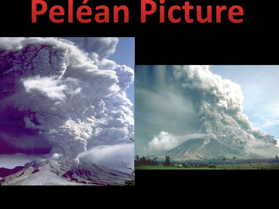 Peléan Picture