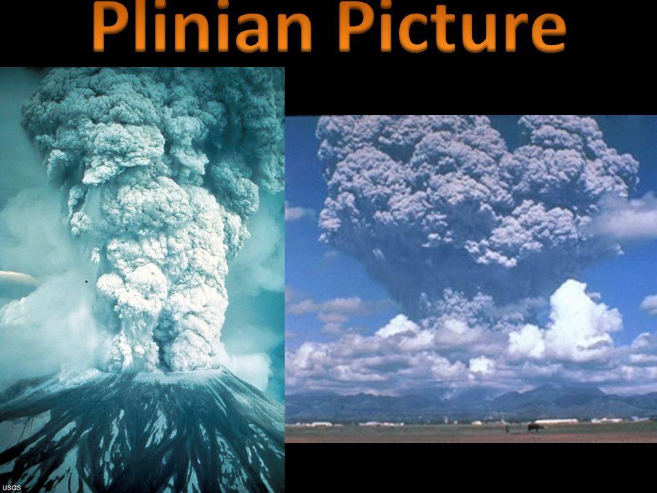 Plinian Picture