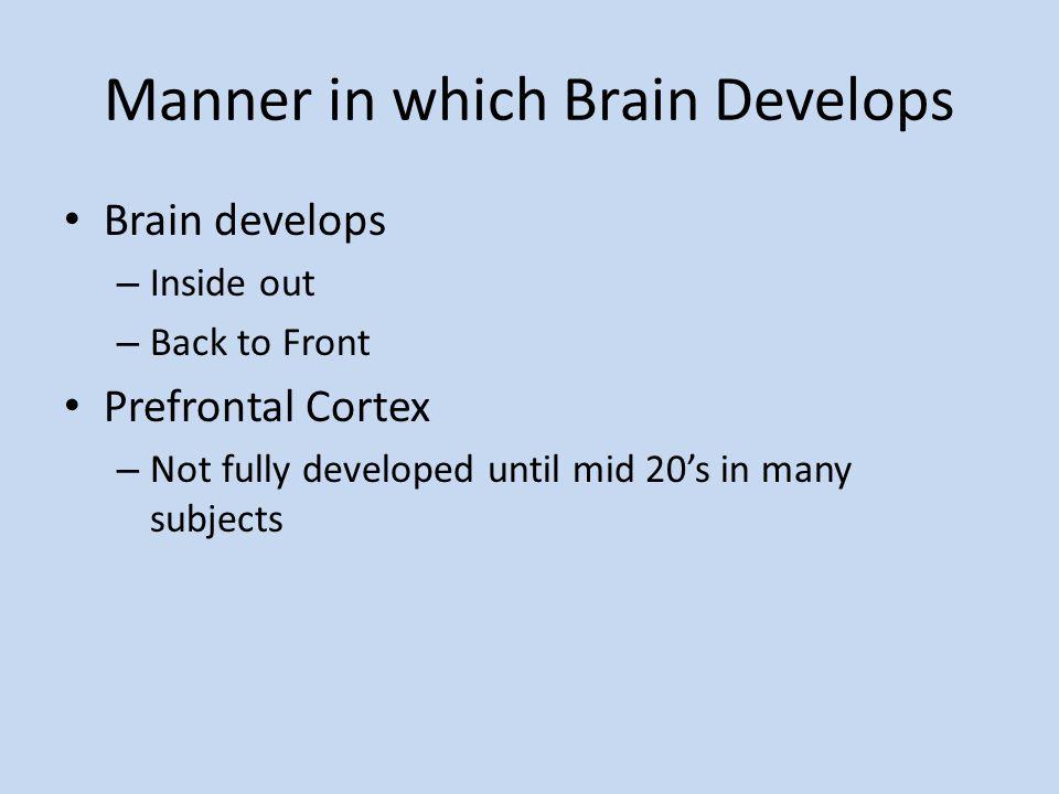 Manner in which Brain Develops