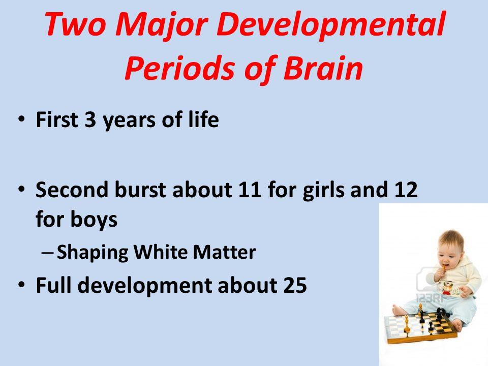 Two Major Developmental Periods of Brain