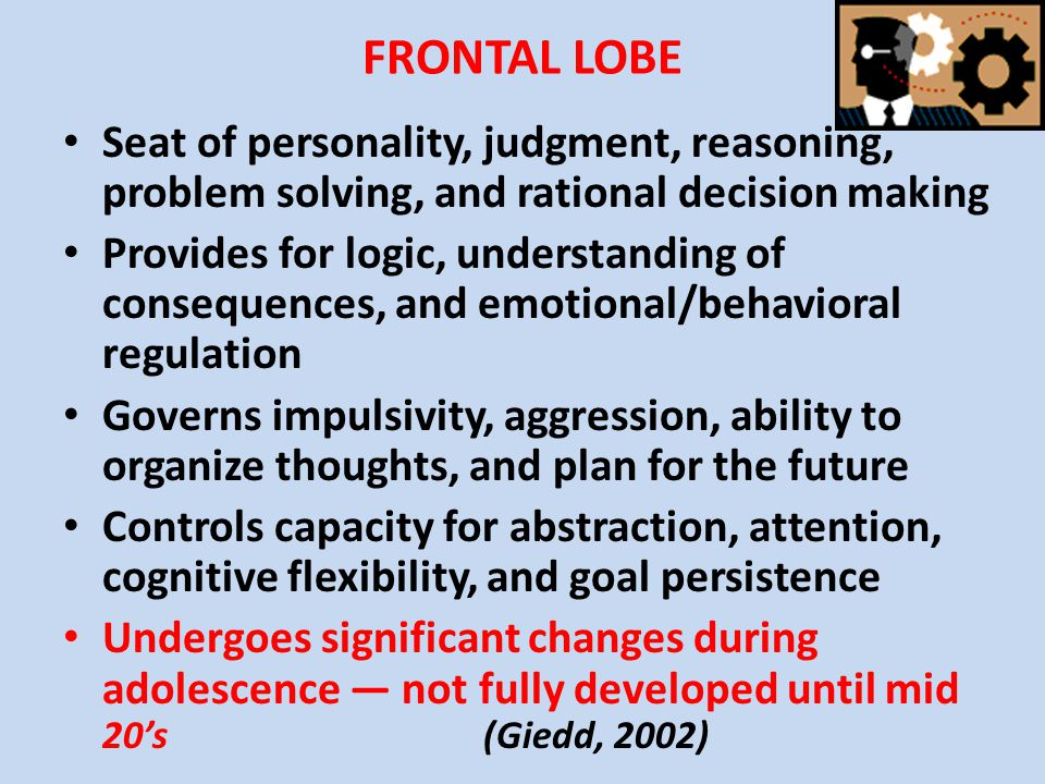 FRONTAL LOBE Seat of personality, judgment, reasoning, problem solving, and rational decision making.