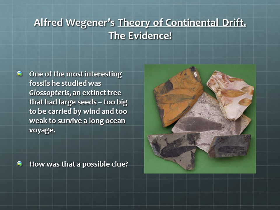 Alfred Wegener's Theory of Continental Drift. The Evidence!